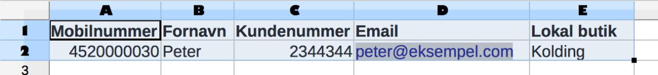 Rediger dine kontakter i excel og tilføj ekstra kolonner med flettefelter
